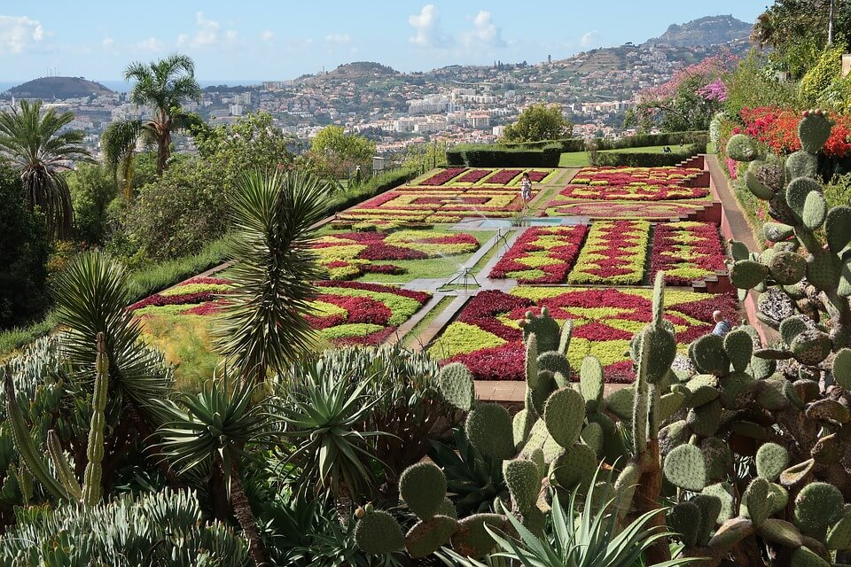 Jardin Botanique Funchal Monte Madere
